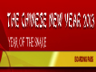 PROGRAMM CHINESE NEW YEAR, FREE OF CHARGE / GRATIS! 瑞士中国新年晚会